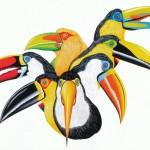 Toucans (sold)